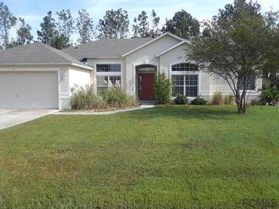 Palm Coast Single Family Home For Sale: 63 Luther Dr
