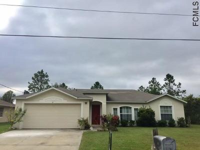Palm Coast Single Family Home For Sale: 11 Lansing Lane