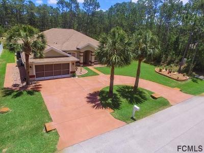 Palm Coast Single Family Home For Sale: 30 Lake Success Dr