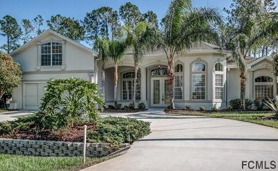 Palm Coast Single Family Home For Sale: 148 Brookside Lane