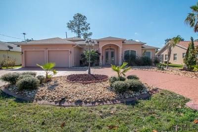 Palm Coast Single Family Home For Sale: 14 Barring Pl