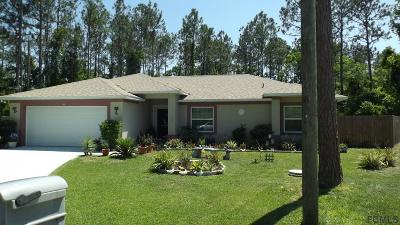 Palm Coast Single Family Home For Sale: 20 Zither Court