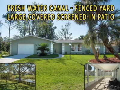 Palm Coast Single Family Home For Sale: 56 Flamingo Dr