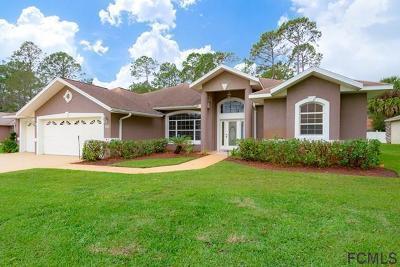 Palm Coast Single Family Home For Sale: 115 Brookside Lane