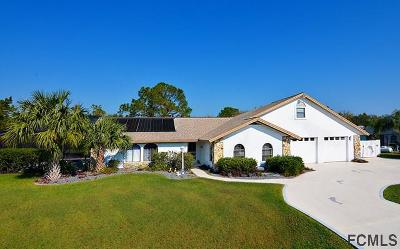 Palm Coast Single Family Home For Sale: 5 Colorado Drive