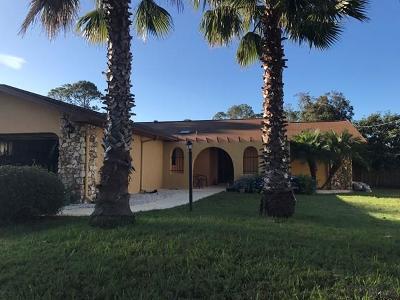 Palm Coast Single Family Home For Sale: 50 Berkshire Ln