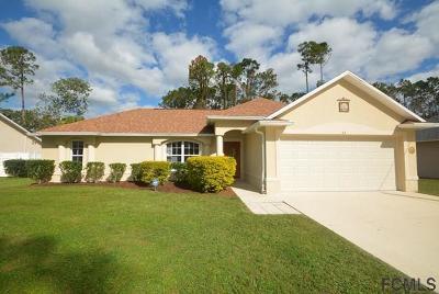 Palm Coast Single Family Home For Sale: 53 Bannbury Ln