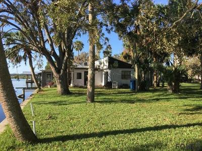 Ormond Beach Single Family Home For Sale: 493 Palm Ave