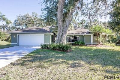 Ormond Beach Single Family Home For Sale: 10 Cotton Mill Ct