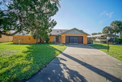Flagler Beach Single Family Home For Sale: 629 Cumberland Dr