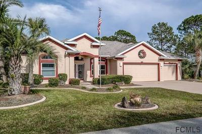 Palm Coast Single Family Home For Sale: 20 Biscay Lane