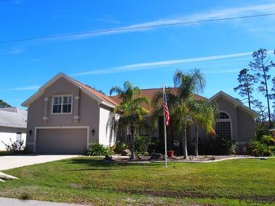 Palm Coast Single Family Home For Sale: 18 Ethan Allen Drive
