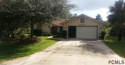 Palm Coast Single Family Home For Sale: 72 Bridgehaven Drive