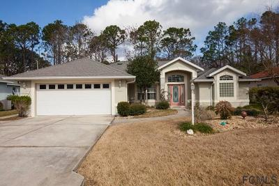 Palm Coast Single Family Home For Sale: 94 Lindsay Dr