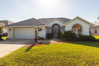 Palm Coast Single Family Home For Sale: 18 Commander Court