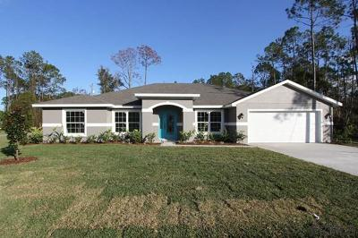 Palm Coast Single Family Home For Sale: 73 Edward Dr