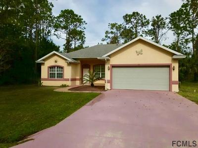 Palm Coast Single Family Home For Sale: 19 Radcliffe Drive