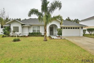 Palm Coast Single Family Home For Sale: 81 Lancelot Drive