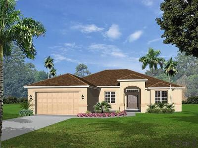 Palm Coast Single Family Home For Sale: 11 Eastman Lane