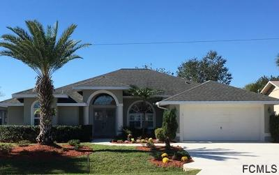 Palm Coast Single Family Home For Sale: 14 Cormorant Court