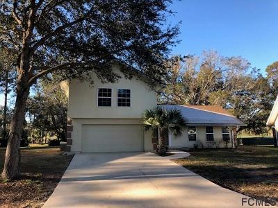 Palm Harbor Single Family Home For Sale: 25 Cole Place
