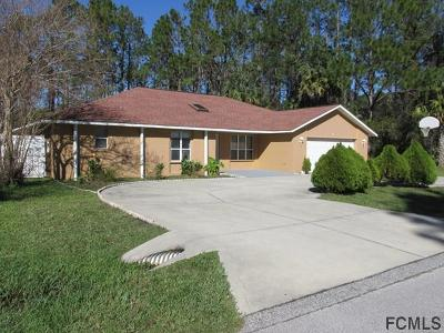 Palm Coast Single Family Home For Sale: 8 Palmer Lane