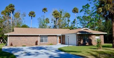 Palm Coast Single Family Home For Sale: 89 Blare Drive