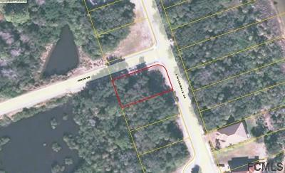 Palm Coast Plantation Residential Lots & Land For Sale: 296 S Riverwalk Dr