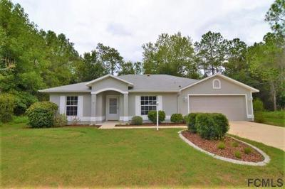 Palm Coast Single Family Home For Sale: 98 Karas Trail