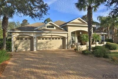 Palm Coast Single Family Home For Sale: 19 Grandview Drive