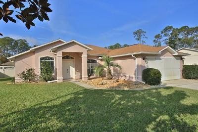 Palm Coast Single Family Home For Sale: 27 Brushwood Lane