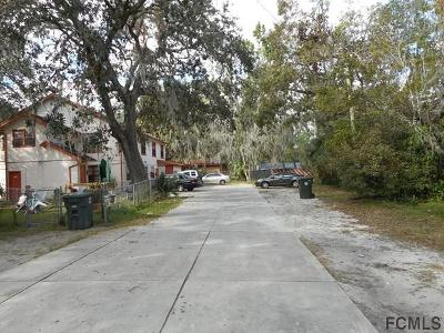 Daytona Beach Multi Family Home For Sale: 700 Madison Ave