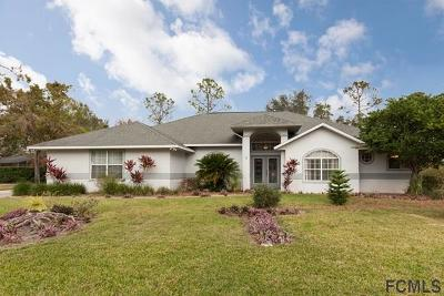Ormond Beach Single Family Home For Sale: 20 Lake Vista Way