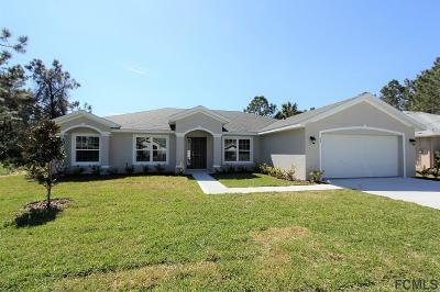 Matanzas Woods Single Family Home For Sale: 62 Luther Dr