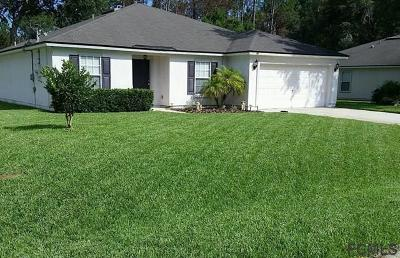 Palm Coast Single Family Home For Sale: 80 Bruning Lane