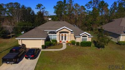 Matanzas Woods Single Family Home For Sale: 23 Lewis Dr