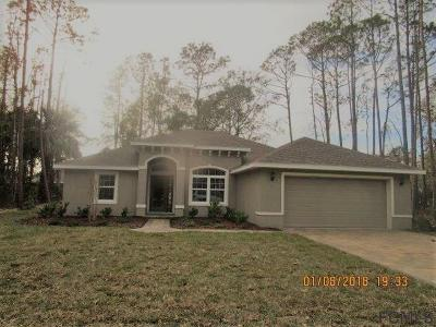Matanzas Woods Single Family Home For Sale: 75 Lindsay Dr