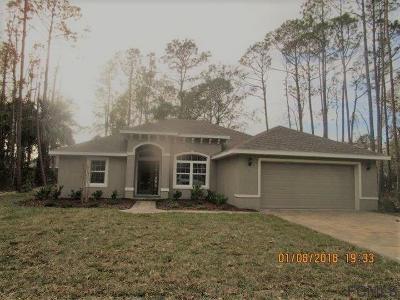 Palm Coast Single Family Home For Sale: 75 Lindsay Dr