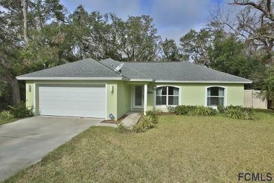 Palm Coast Single Family Home For Sale: 15 Armand Beach Dr