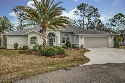 Palm Coast Single Family Home For Sale: 6 Coyen Place