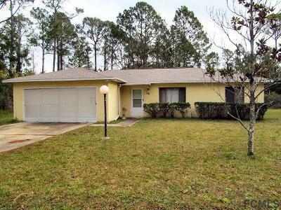 Palm Coast Single Family Home For Sale: 49 Serbian Bellflower Trail