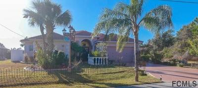 Palm Coast Single Family Home For Sale: 43 Luther Dr