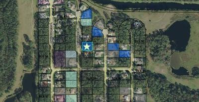 Residential Lots & Land For Sale: 6 Lake Charles Pl