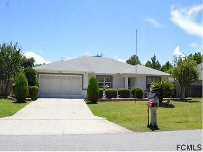 Palm Coast Single Family Home For Sale: 11 Fayy Lane