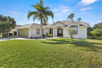 Palm Coast Single Family Home For Sale: 89 Cochise Court