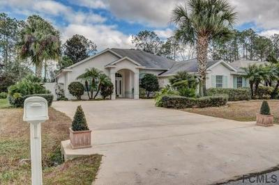 Palm Coast Single Family Home For Sale: 13 Evans Dr