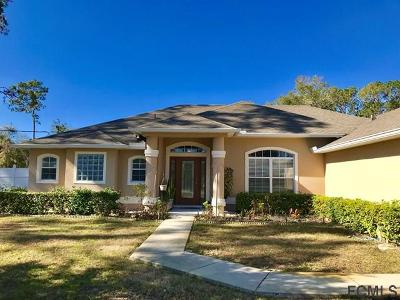 Palm Coast Single Family Home For Sale: 1 Parkway Drive