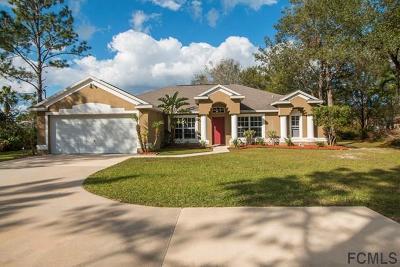 Palm Coast Single Family Home For Sale: 11 Watkins Place