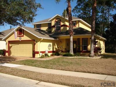Palm Coast Single Family Home For Sale: 133 Waterside Pkwy W