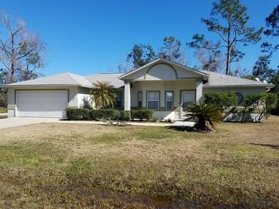 Palm Coast Single Family Home For Sale: 1 Roller Lane